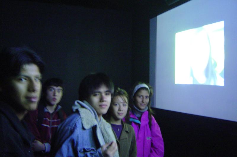 proyectoushuaia-bienal-012007